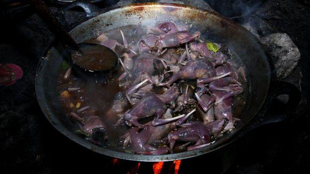 கொரோனா வைரஸ் : டிரெண்டிங்கில் உள்ள காணொளிகள்