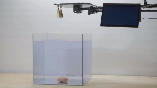 A submerged speaker and a radar unit