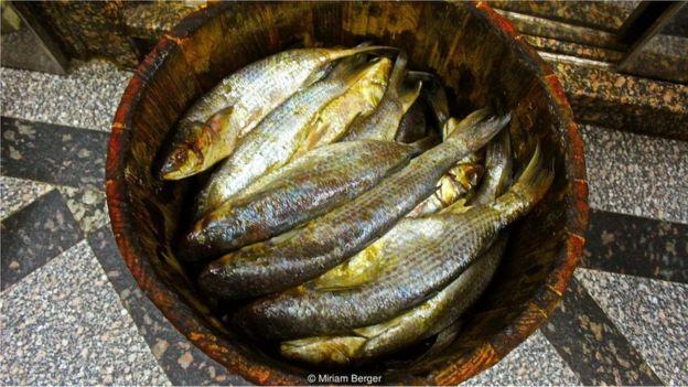 fesik balık