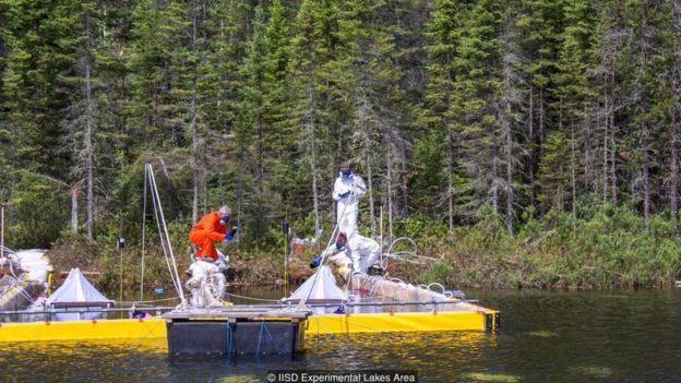 Pesquisadores jogam betume em lago canadense