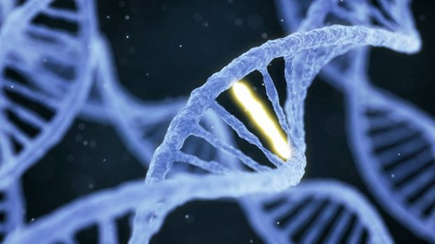 Molécula de ADN.