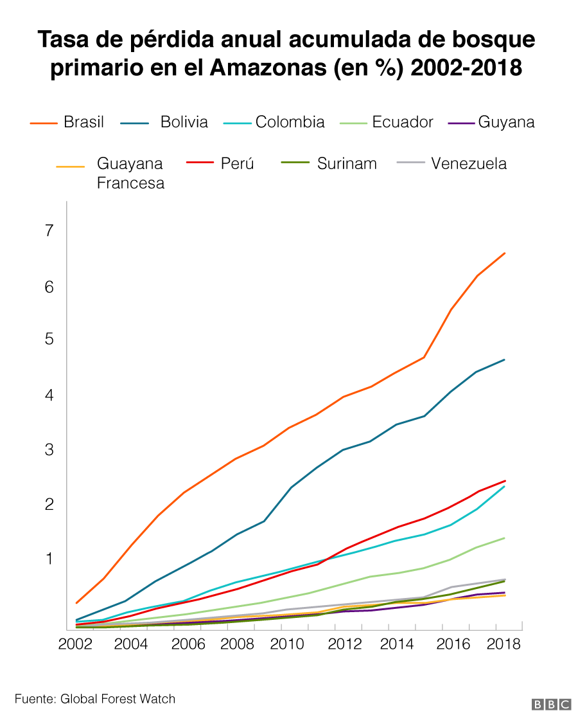 Deforestacion en America Latina