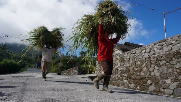 warga desa