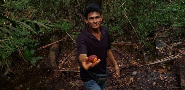 O ribeirinho José Camilo da Silva mostra um buriti