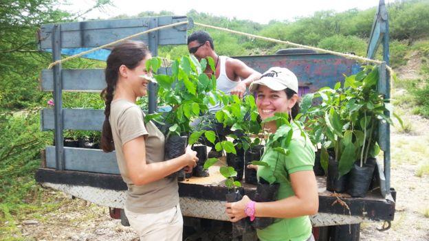 Equipo de Provita con arbolitos nativos