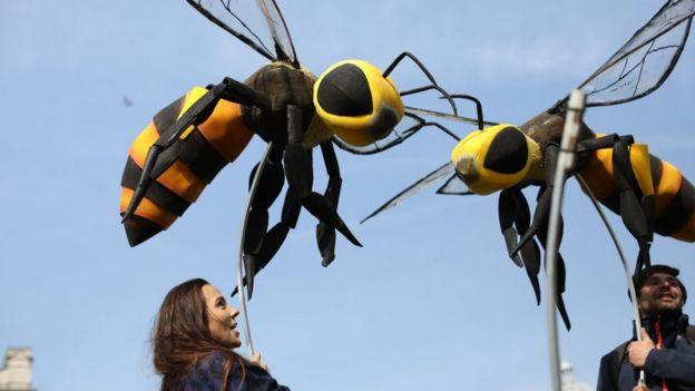 Parlamento Meydanı'na arı şeklinde dev maskotlar kondu.