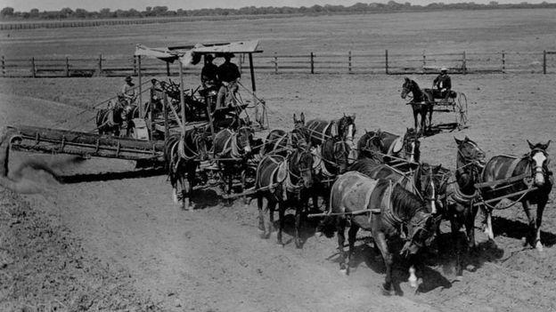En el siglo XIX, la sociedad estadounidense era mayormente rural.