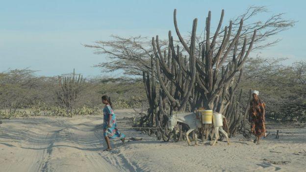 Mujeres con un burro en el desierto (Foto: Natalio Cosoy/ BBC Mundo)