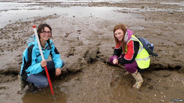 Archaeologists on Cleethorpes beach