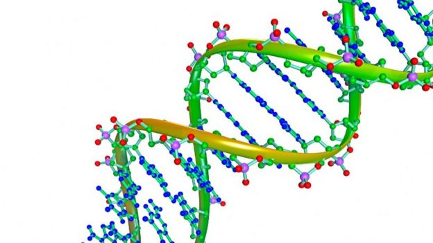 DNA structure illustration