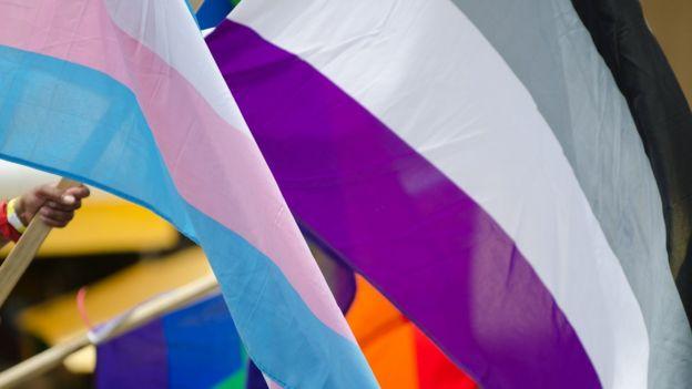 Bandeira que representa a assexualidade, com as cores preta, cinza, branca e roxa