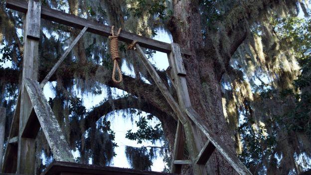 Forca antiga em árvore