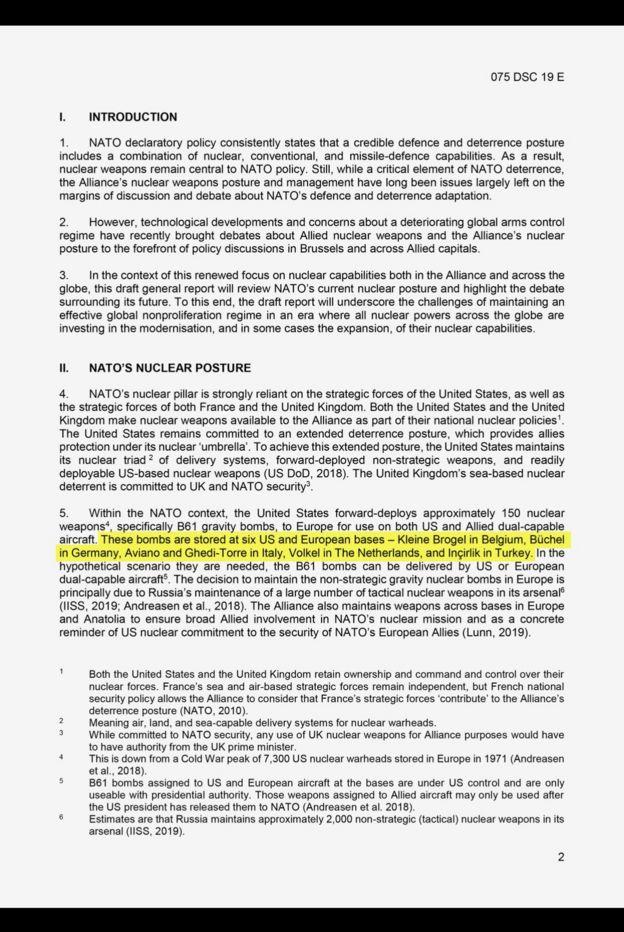 NATO Parlamenter Asamblesi Savunma ve Güvenlik Komitesi için hazırlanan rapor