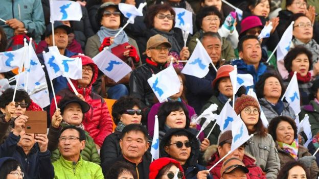 South Korean supporters wave 'Unification flags' during a football match