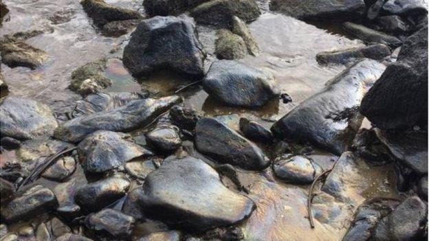 Foto de rocas en la playa de El Palito, al noroeste de Venezuela.