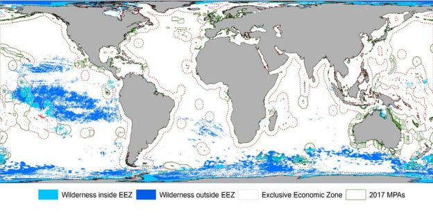 Ocean wilderness \'disappearing\' globally - BBC News