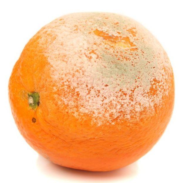 Naranja enmohecida.