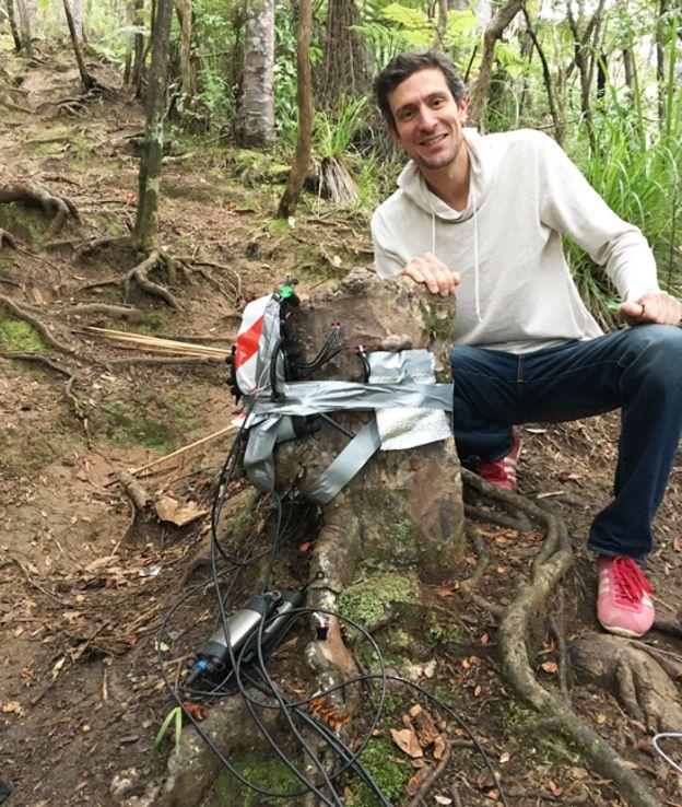 Sebastian Leuzinger junto al tocón de kauri