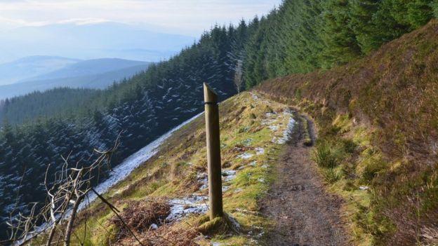 Glentress trail