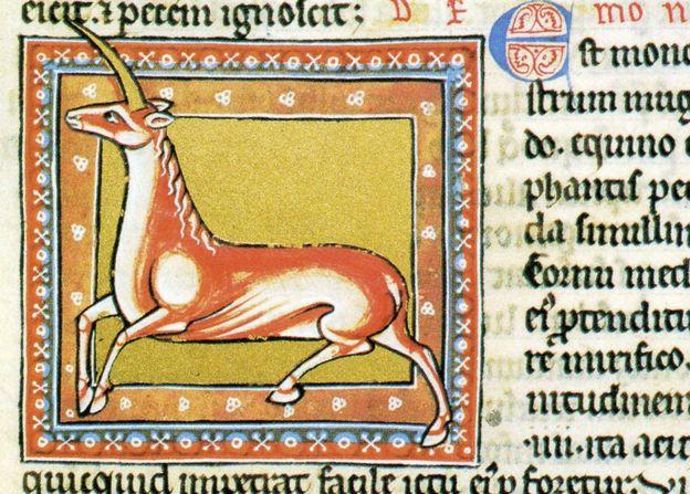 Los unicornios no eran lo que luego llegaron a ser. Este es del bestiario de Ashmole, siglo XIII.