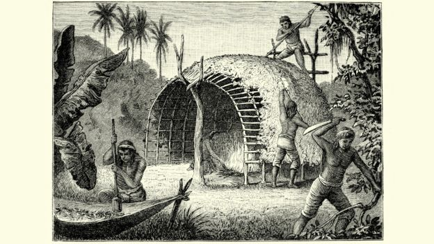 Grabado de fines del siglo XVIII que retrata indígenas paraguayos cosechando y secando yerba mate (Ilex paraguariensis).