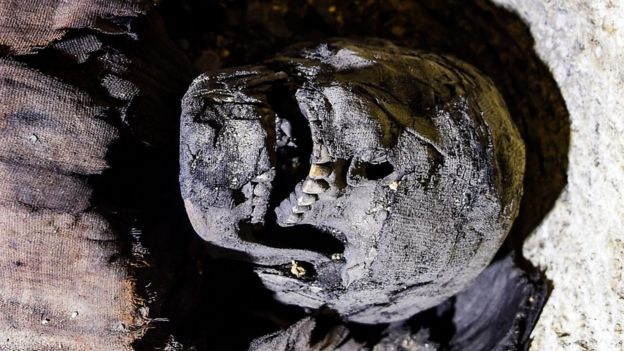 partially uncovered skull of a mummy found in Minya