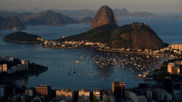 O Brasil deve seu nome a uma árvore.