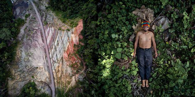 رجل يفترش عشبا أخضر مورقا