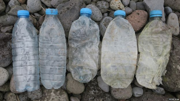 Discarded water bottles