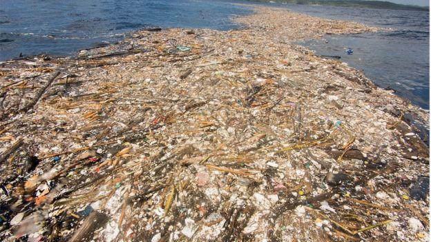 Lixo flutuando no mar do Caribe