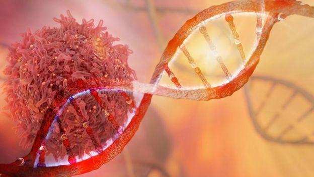 Célula cancerígena e DNA