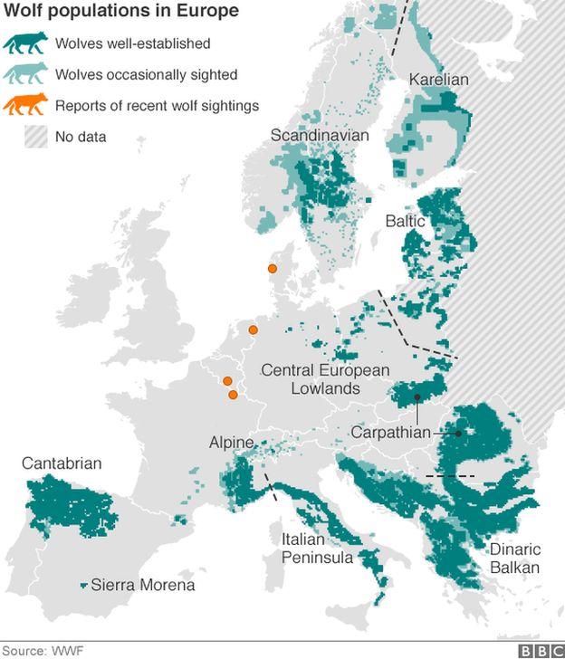 Wolf distribution map