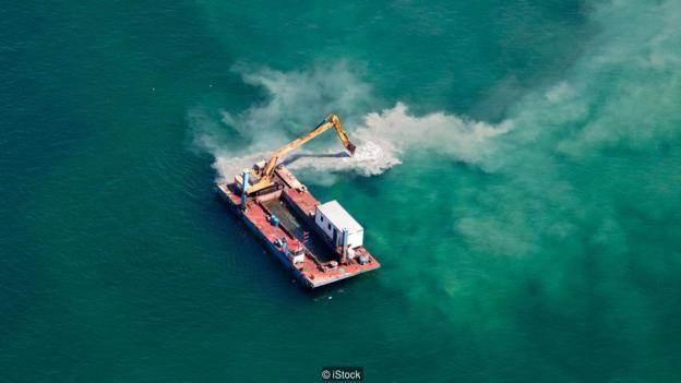 Xây dựng lấn biển có thể gây hỗn loạn cho hệ sinh thái đại dương