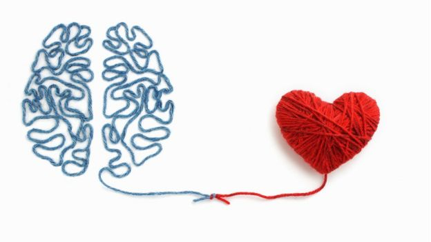 Brain and heart of thread.