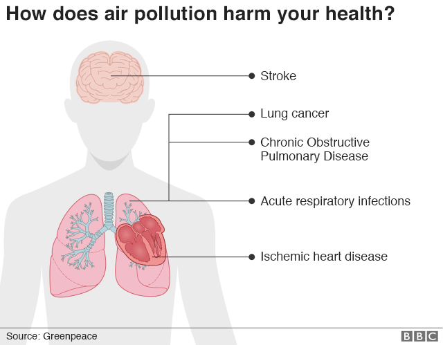 graphic showing effects of air pollution on the body