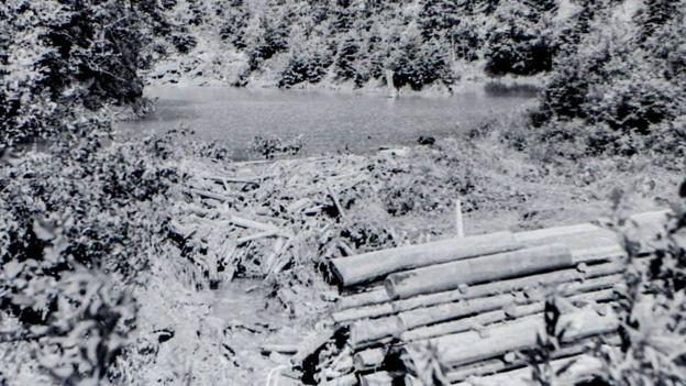 Озеро 1955 року