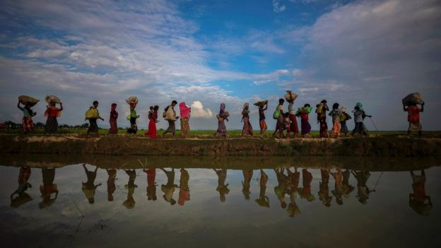 Rohingya refugees are reflected in rain water along an embankment next to paddy fields after fleeing from Myanmar into Palang Khali, near Cox's Bazar, Bangladesh