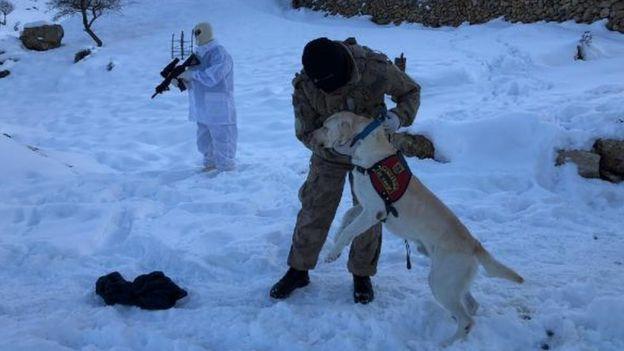 Beytüşşebab'daki arama faaliyetlerine Jandarma Özetil timleri de katıldı.