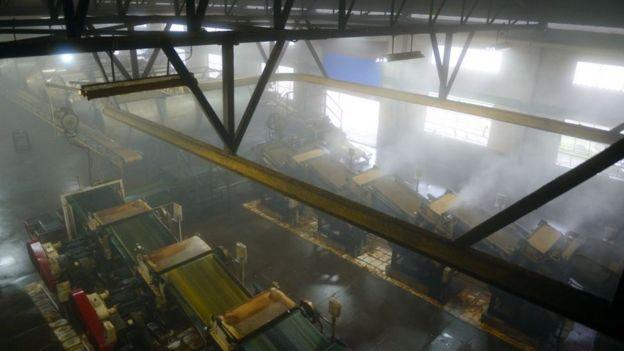 印度一家茶叶工厂