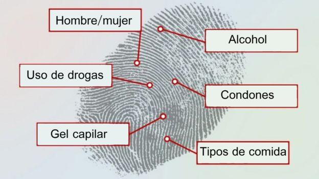 Sistema de detección de huellas dactilares de Reino Unido