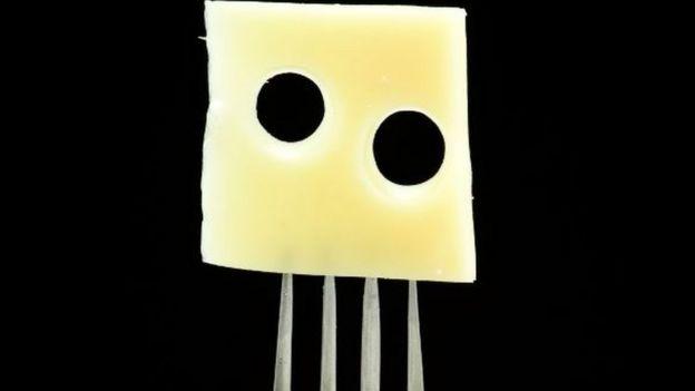 Trozo de queso