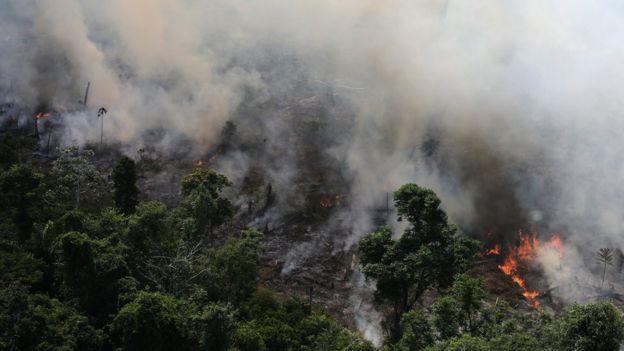 Un incendio en la Amazonía