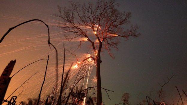 Incêndio florestal em Rondônia, em foto de 15 de setembro