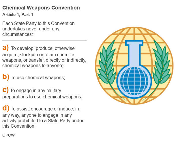 Datapic outlining Article 1, Part 1 of the chemical weapons convention