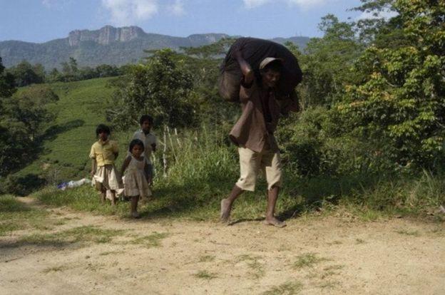 மலையகத் தமிழர்கள் இந்திய வம்சாவளியைச் சேர்ந்தவர்கள்.