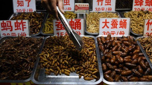 Alguns vêem os insetos como substitutos da carne, como alguns lugares da China