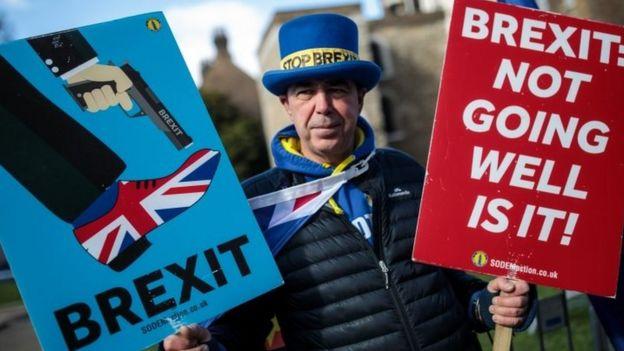 反对脱欧的抗议者