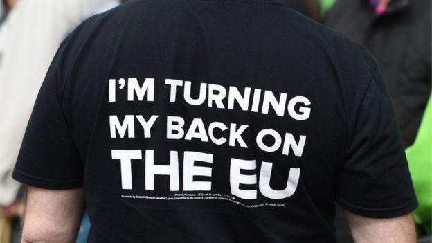 AB karşıtı UKIP seçmenlerinden biri