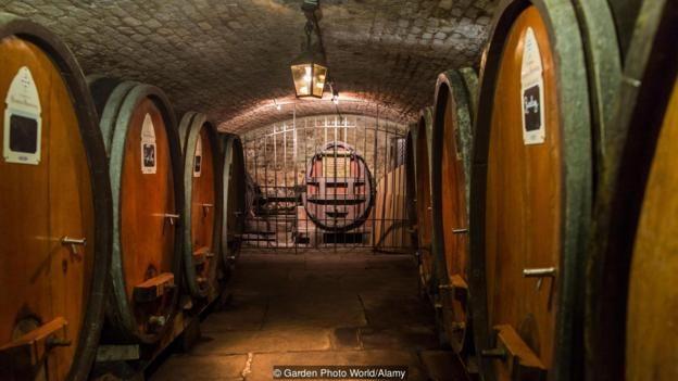 Kể từ năm 1395, Bệnh Viện Dân Sự Strasbourg đã có mối quan hệ cộng sinh với Hầm Rượu Nhà Tế Bần Của Strasbourg