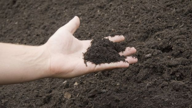Soil improver from amenity compost scheme, Wales, United Kingdom